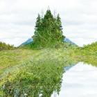 , The Banff Centre:The Art of Stillness Residency [テーマレジデンスプログラム]