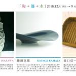 20181204_sanninten_dm1