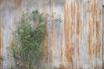 牧野和馬個展「壁」