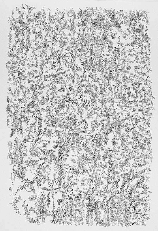 """Takashi Miyagawa  Exhibition """"Automatic Drawings"""""""