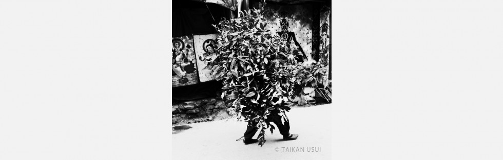 Taikan Usui Photo Exhibition