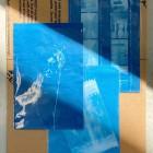 , 【協力イベント】永久に茂らん新道の集い「青写真で残す、私たちの記憶」