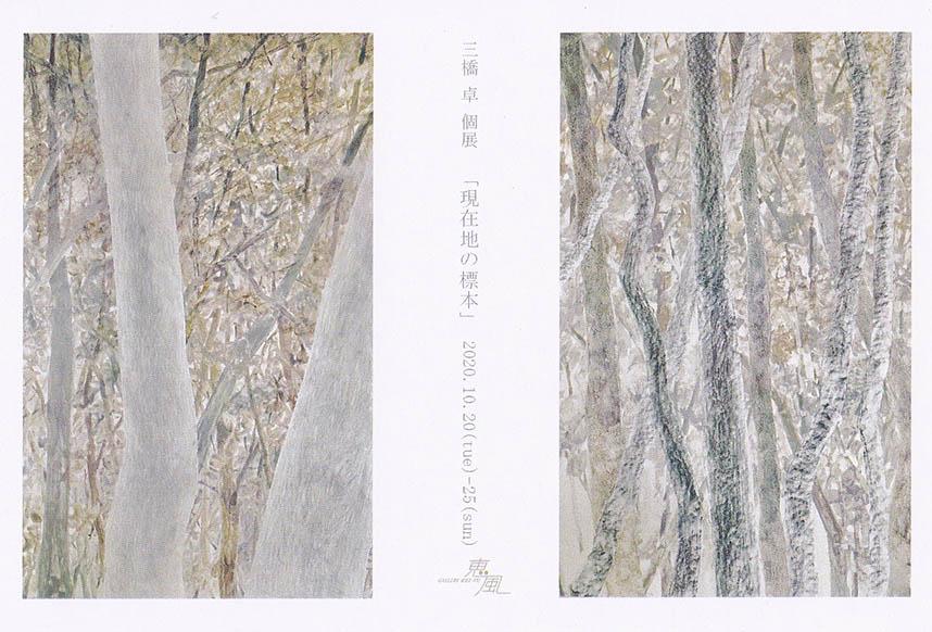 MITSUHASHI Taku Exhibition
